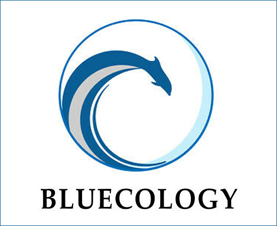 Bluecology Expeditions by Hawai'i Wildlife Fund