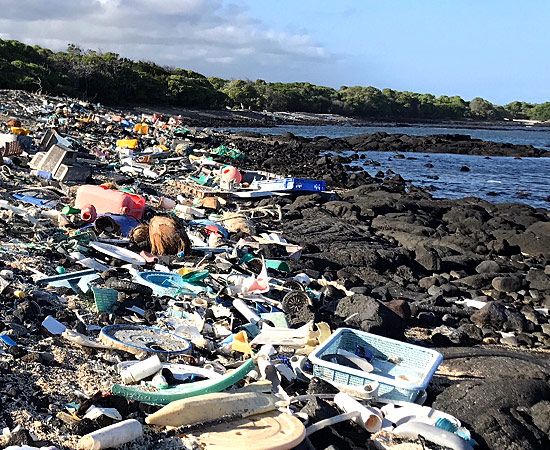 Marine Debris Removal by Hawai'i Wildlife Fund