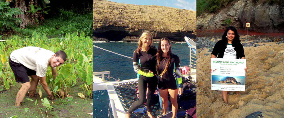 internship-program-hawaii-wildlife-fund