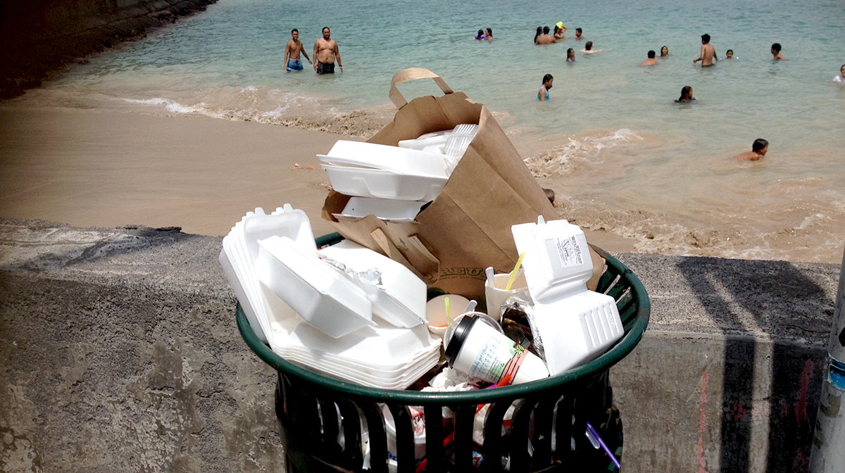 Single-use-plastics-can-litter-our-oceans-and-coastlines-photo-by-lindsey-kramer-kailua-bay-kona-hawaii-wildlife-fund