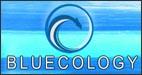 bluecology-hawaii-wildlife-fund