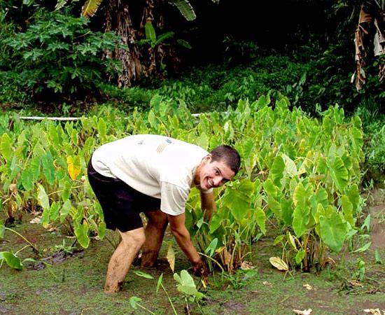 Internships - Hawaiʻi Wildlife Fund