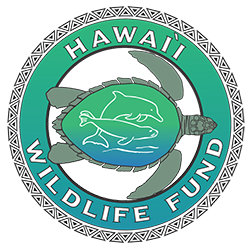hawaii-wildlife-fund-logo
