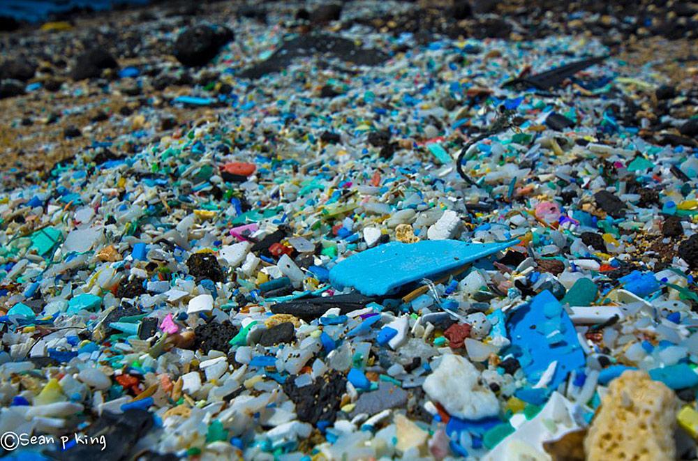 microplastic-pollution-in-hawaii-beach-sand-hawaii-wildlife-fund