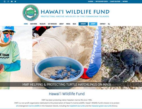 HWF New Website!
