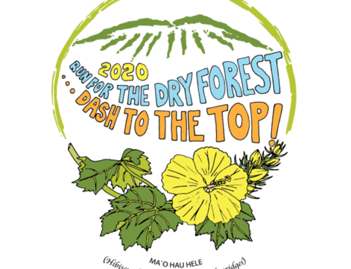 RUN FOR THE DRY FOREST 2020:  Dash to the Top of Pu'uwa'awa'a Starts Today!