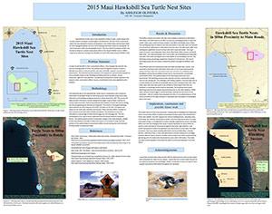 2015-maui-hawksbill-sea-turtle-nest-sites-small